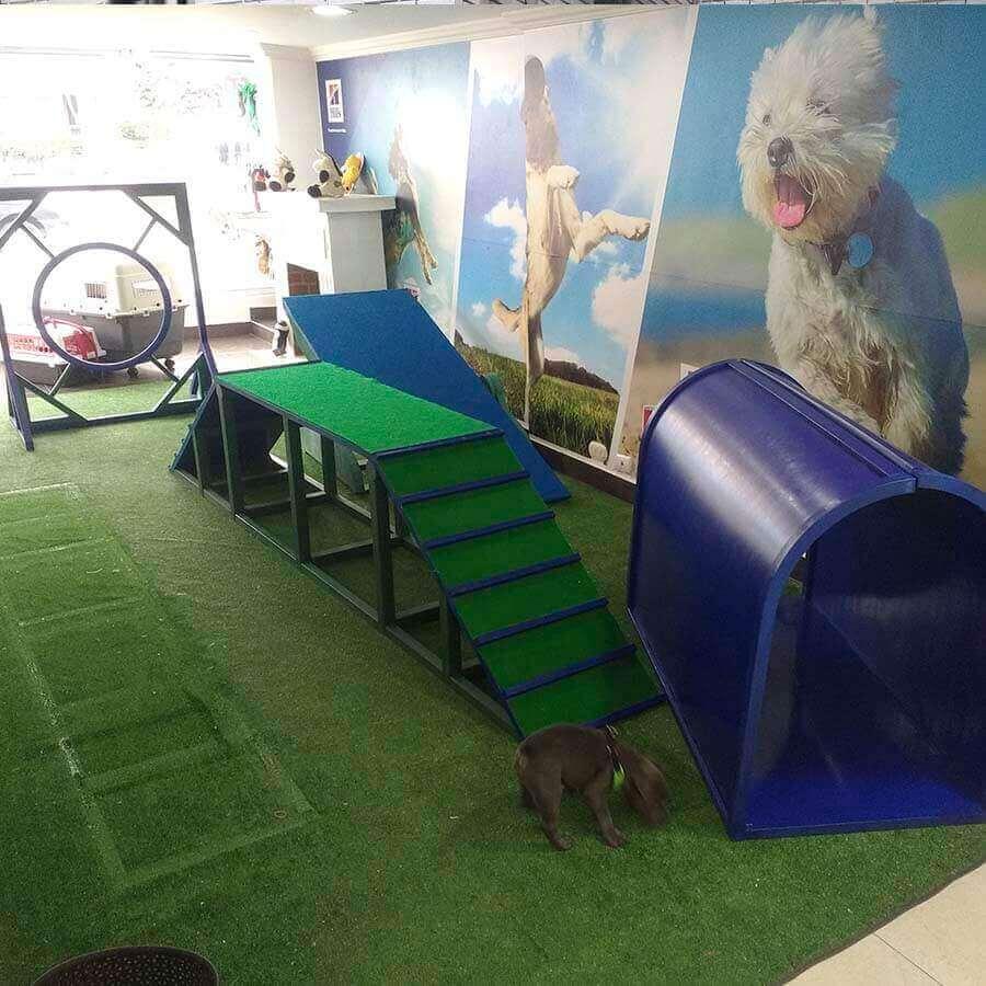 Pista de Obstáculos para Perros 0, Agility Canino en Plástico Bogotá 0,pistas para perros 0, pista Agility 0, pista de Agility para perros 0, pista de carrera para perros 0, pista de obstáculos para perros 0, parques para perros 0, parque para mascotas 0, parques caninos 0, parque cachorros 0, parque mascotas 0, recinto para perros 0, parque de juegos para perros 0, parque de cachorros 0, parque para perros grandes 0, parque plástico para perros 0, parque Agility perros en Bogotá 0, parque Agility en Colombia 0, casas para perros mascotas 0, Agility de perros 0, pistas de adiestramiento caninos para perros equipo en 2020 0, parque para perros 0, casas para perros 0, perros