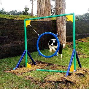 agility obstaculos obstaculos agility para perros parque agility para perros parque entrenamiento para perros pista de agility para perros pista de entrenamiento para perros pista de obstaculos para perros pistas de entrenamiento agility para perros pistas para perros area de juegos para perros aro de entrenamiento para perros aro de salto para perros balancin agility canino balancin para entrenamiento canino balancin para perros barra de salto entramiento canino barra de salto graduable barra de salto para perros comprar parque para perros empalizada de entranamiento para perros empalizada para perros juegos para perros en parques muro de entrenamiento para perros obstaculos agility obstaculos para perros parque agility parque atracciones para perros parque canino parque de juegos para mascotas parque de juegos para perros parque de mascotas parque juegos perros parque portatil para perros parques agility para perros parques caninos parques de perros parques para perros pasarela agility pasarela para entrenamiento de perros pista agility pista agility perros pista de juegos para perros pistas de agility rampa agility salto de longitud para entrenamiento de perros salto de longitud para perros slalon de entrenamiento para perros slalon para perros tunel de lona para perros tunel para perros viaducto de entrenamiento para perros circuito de entrenamiento para perros atracciones para perros